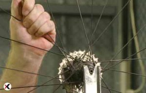how-to-true-a-bike-wheel